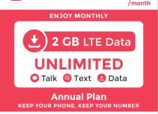 Red Pocket Mobile Annual eBay Plan 2 GB Data